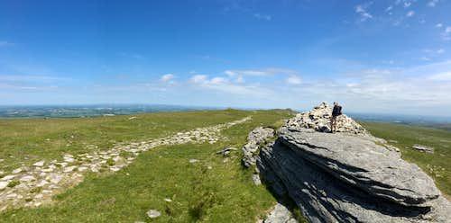High Willhays (621m), Dartmoor.