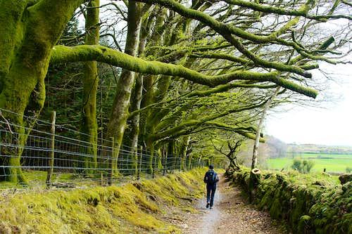 Natsworthy Manor, Dartmoor.