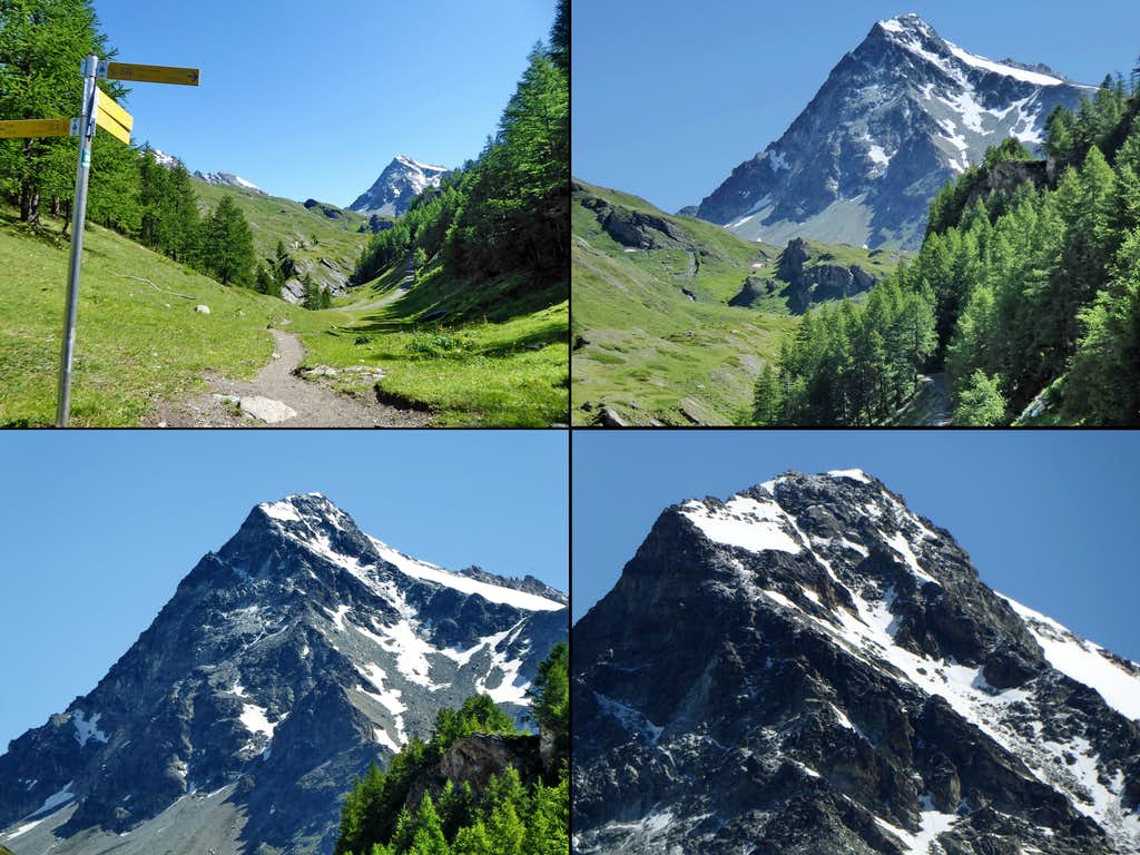 Zoom shot in four steps on Mont Gelé