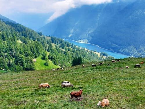 Lago di Castello, Pontechianale