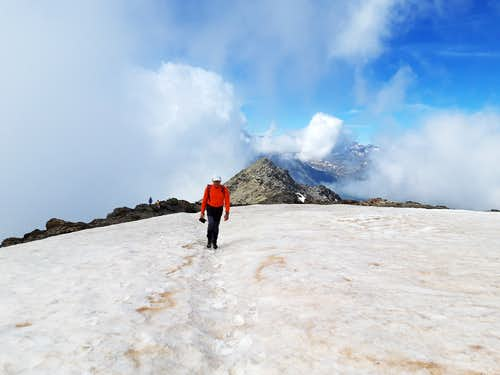 Punta Tre Chiosis, the snow field before the summit