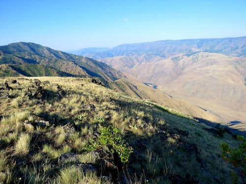 Sawpit Saddle Hike, Hells Canyon