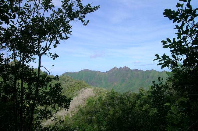 View from the trail to the NE