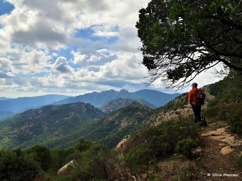 Admiring the wilderness of Monte Arcosu reserve
