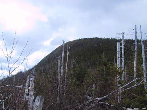 Galehead Mountain from near...