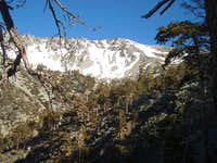 Baldy Bowl from Ski Hut Trail...