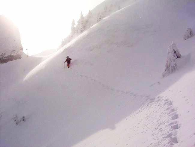 Avalanche area in Ciucas...