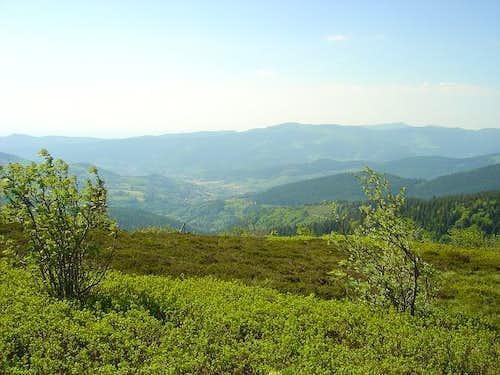Munster valley from Gazon du...