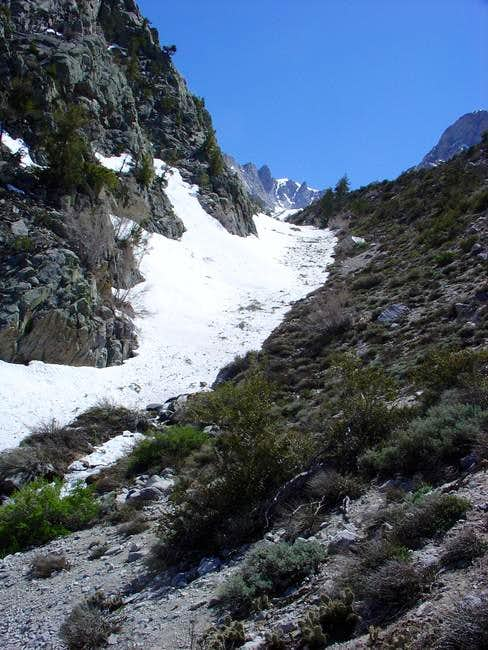 looking up the North Fork of...