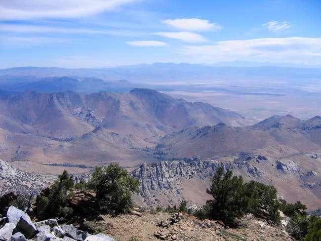 Owens Peak Summit View