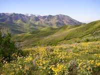 Grandeur Peak from the...