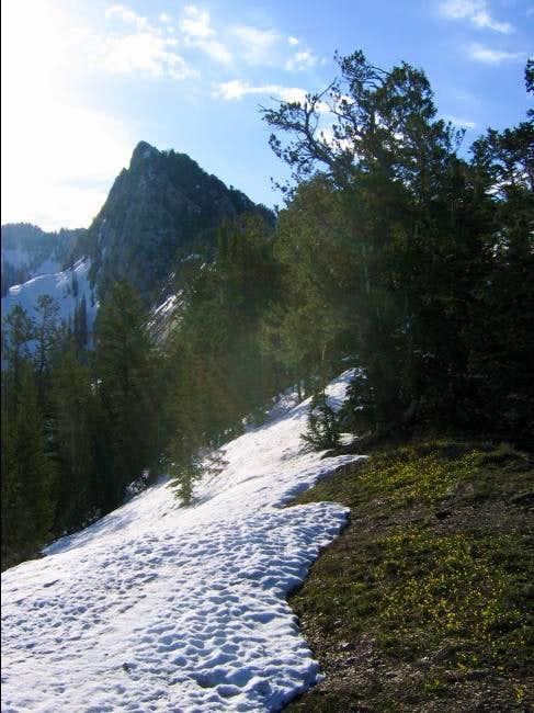 Approaching Triangle Peak...