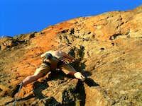 Low on Sunkist - Orange Wall