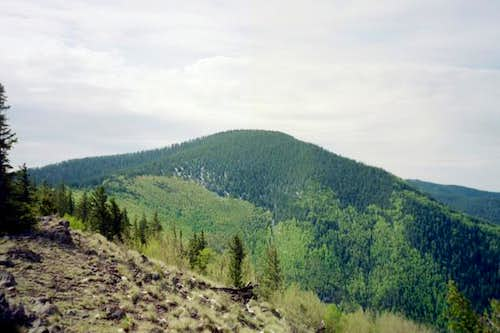 A view of Whitewater Baldy.
