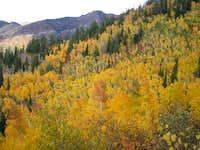 Fall colors on Gobbler' Knob...