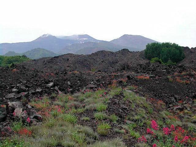Etna from NE (piano Provenzana)