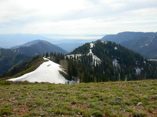 Standing on Lookout Peak...