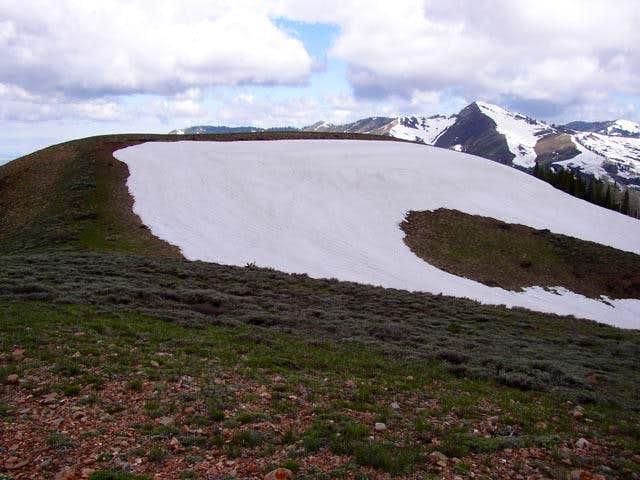 Summit of Lookout Peak,...