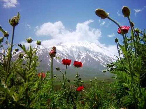 Nandel plateau of Damavand...