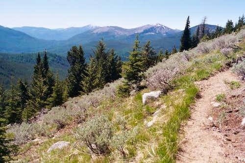 Wapaloosie Trail #15