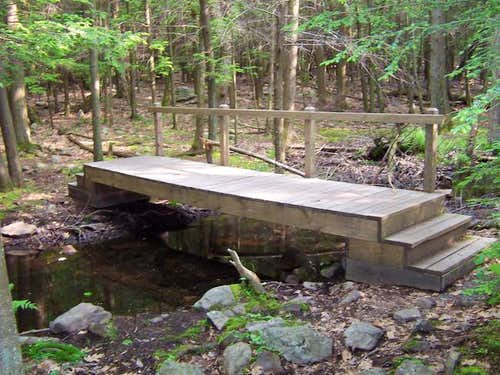 Bridge Built by Boy Scout...