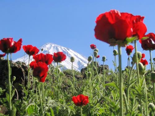 top of Damavand (5670 meters)...