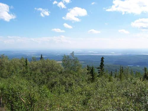 Ester Dome in summer