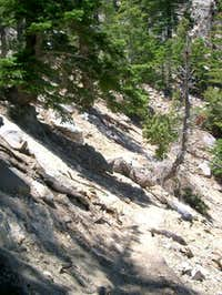 Steep part of Sunrise Trail...