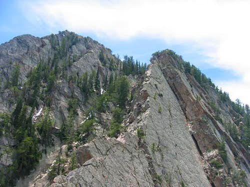 Upper portion of Kamps Ridge...