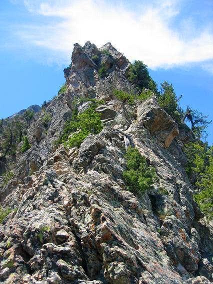 Middle part of Kamps Ridge .