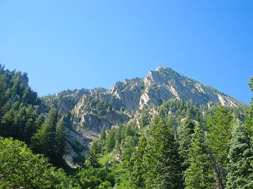 View of Kamps Ridge on the...