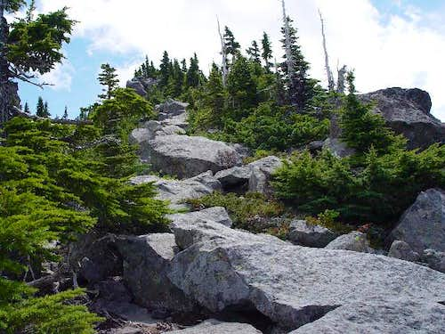 Pacific Crest Trail to the ridge