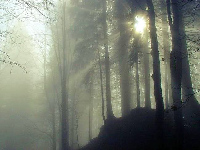 Near Chrno jezero (Black...