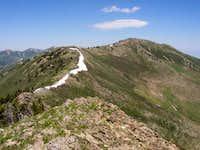 Flat Top Mountain (10,620)...