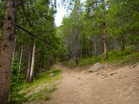 The trail split between...