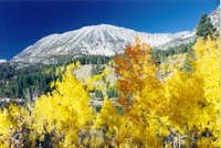 Mt. Starr in the fall