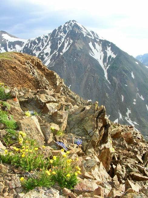 Torreys Peak's rugged side...