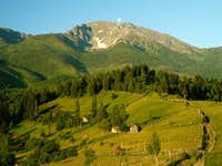 Pietrosul, view from meadow...
