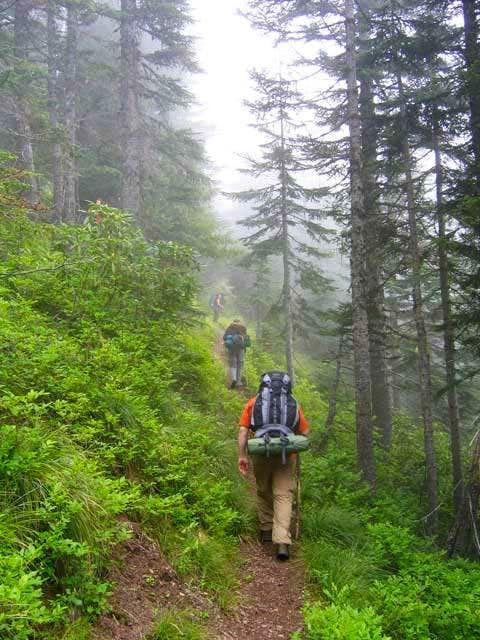 Hiking up the hunchback trail...