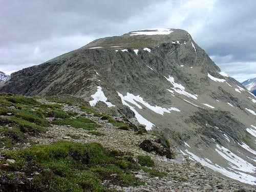 Summit of Nub Peak from