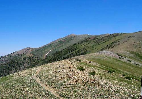 Mount Ellen from near Bull...