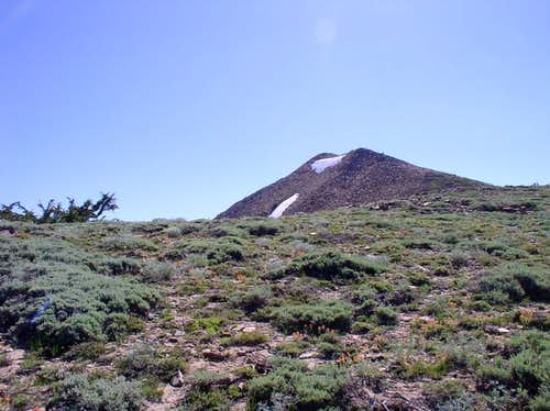 Mokelumne Peak from the...
