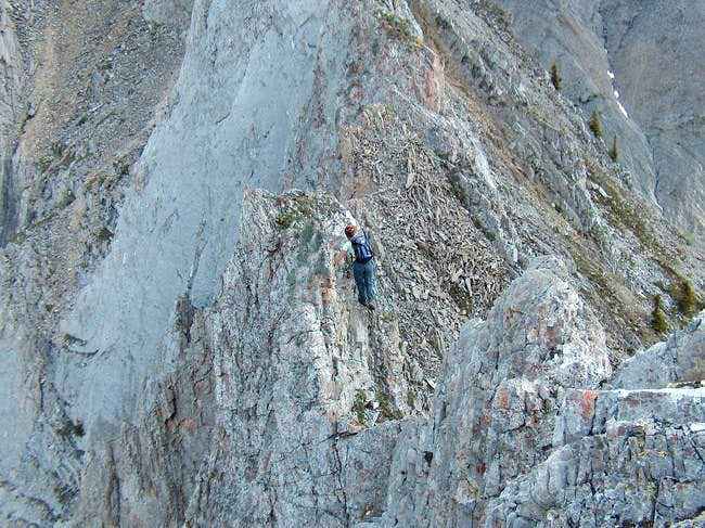 Hands on Scrambling the South...