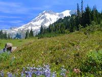Mt Rainier from Auora Lake
