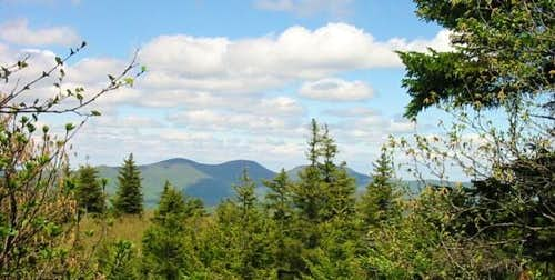 The Blackhead Range as seen...
