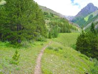 Approach trail to Grizzly...