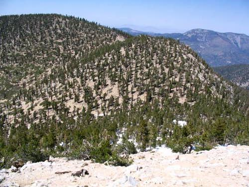 Little Charlton Peak