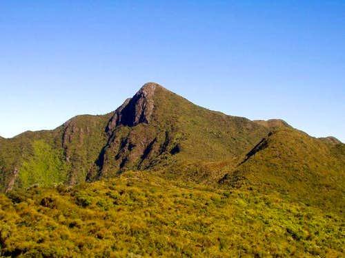 The summit of Capim Amarelo...