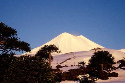 Volcan Llaima from the base...