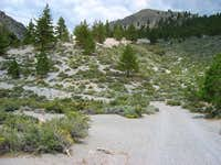 Crater Mountain Pumice Scree Slog